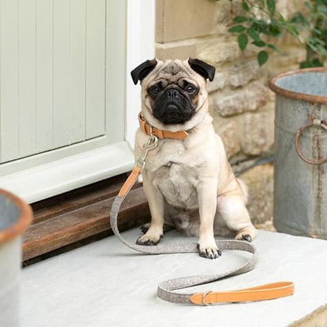 Camello Leather and Grey Tweed Dog Lead 5