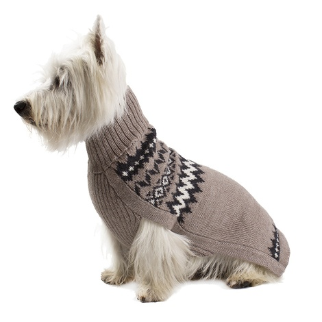 Mystery Earth Dog Jumper 2