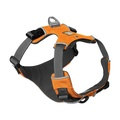Front Range™ Dog Harness Campfire Orange 4