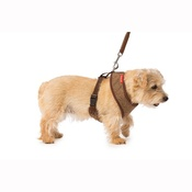 House of Paws - Brown Tweed Memory Foam Harness