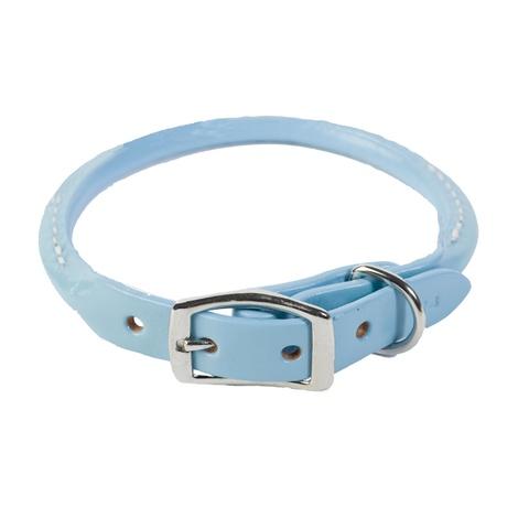 Rolled Leather Dog Collar – Baby Blue