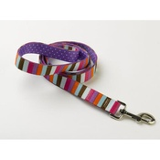 Yellow Dog - Multi-Stripe on Purple Polka Lead