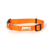 Doodlebone - Bold Dog Collar – Orange