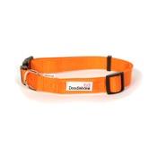 Doodlebone - Bold Dog Collar – Orange