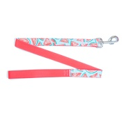 Pet Pooch Boutique - Watermelon Blue Dog Lead