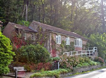 Woodland Cottage, Devon