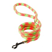 Yellow Dog - Braided Dog Lead – Fluorescent Yellow & Pink