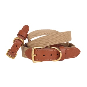 """The Richmond"" Webbing & Leather Tan Collar"