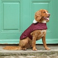 Grape Quilted Dog Coat 2
