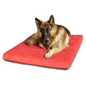 Foam Dog Bed - Flame