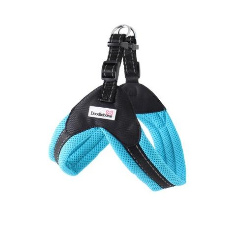 Boomerang Harness - Cyan