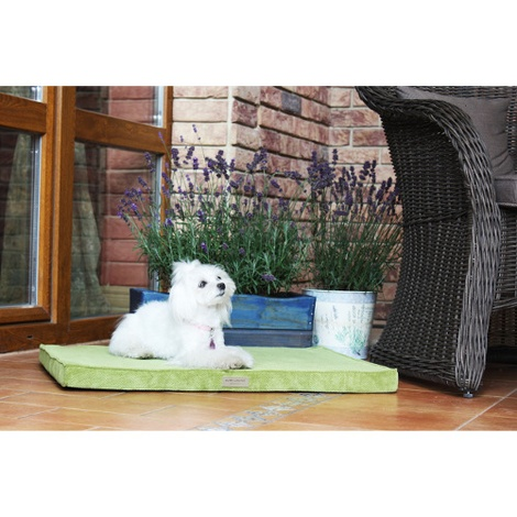 Olive Foam Dog Mat 3