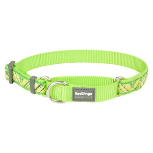 Flanno Martingale Dog Collar – Lime Green