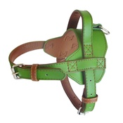 The Paws Pet Supplies - Colour Fusion Leather Harness – Lime