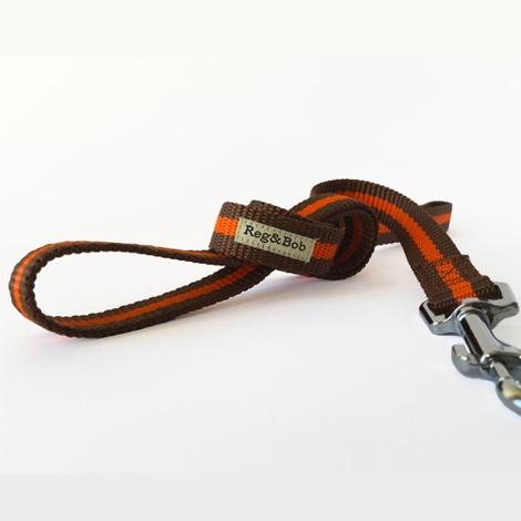 Orange Dog Lead 2