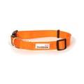 Bold Dog Collar – Orange