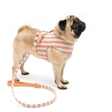 Stripe Pom Pom Dog Harness 2