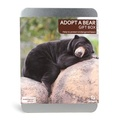 Adopt A Bear Gift Box