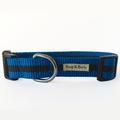 Blue Dog Collar 2
