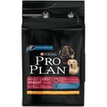 Pro Plan Adult Large Breed Robust Chicken 14kg