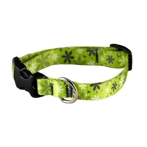 Fresh Floral Dog Lead