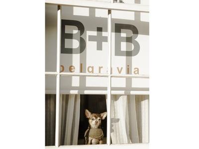 B+B Belgravia, London