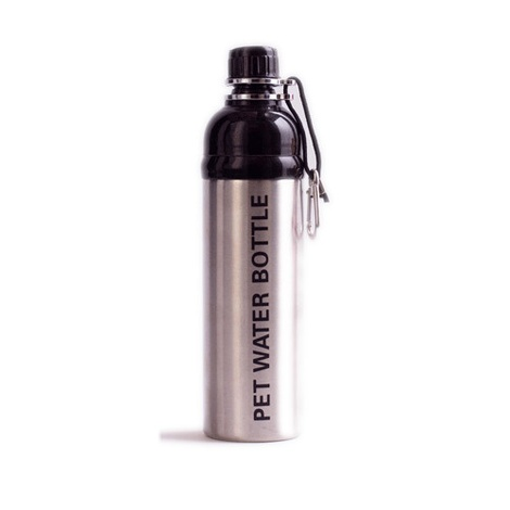 Silver 750ml Pet Water Bottle