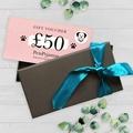 £50 Travel Gift Voucher in Gift Box