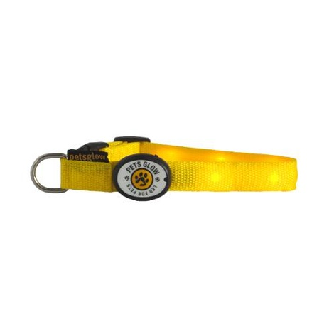 Outshined LED Dog Collar Yellow