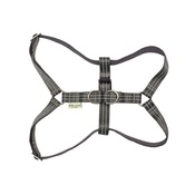 Bowl&Bone Republic - Active Dog Harness - Grey