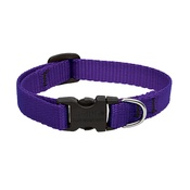"Collarways - 1/2"" Width Purple Lupine Dog Collar"