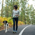 Slackline Dog Lead – Meadow Green 3