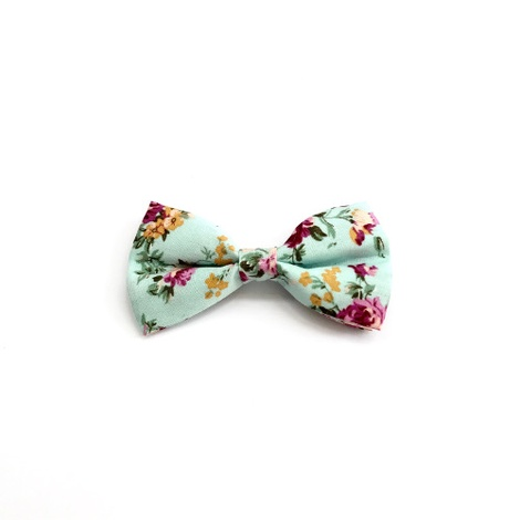 Collar and Bow Tie - Barnes 2