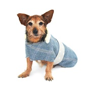 Minkeys Tweed - Polo Tweed Dog Coat