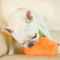 Plush Dog Toy - Pumpkin 3