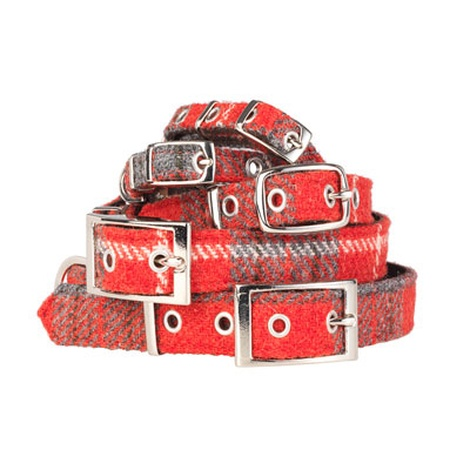Hoxton Tartan Harris Tweed Dog Collar 2