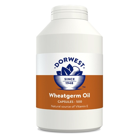 Wheatgerm Oil Capsules for Dogs and Cats 3