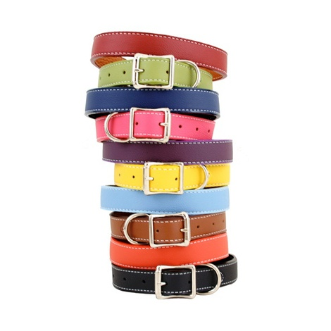 Tuscany Leather Dog Collar – Orange 2