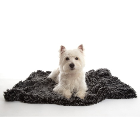Shaggy Pet Blanket - Black