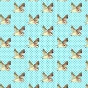 Kate Garey - Barn Owl Gift Paper