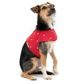 Mutts & Hounds - Cranberry Star Cotton Harness