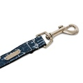 Bow Tie Collar & Lead Set - Salcombe 4