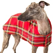 PetsPyjamas - Personalised Red Tartan Sighthound Coat