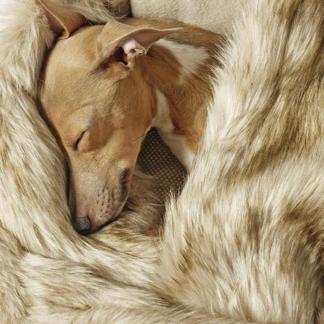 Faux-Fur & Fleece Dog Blanket - Oatmeal