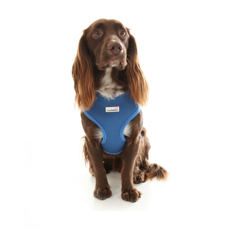 Airmesh Dog Harness – Royal Blue 4