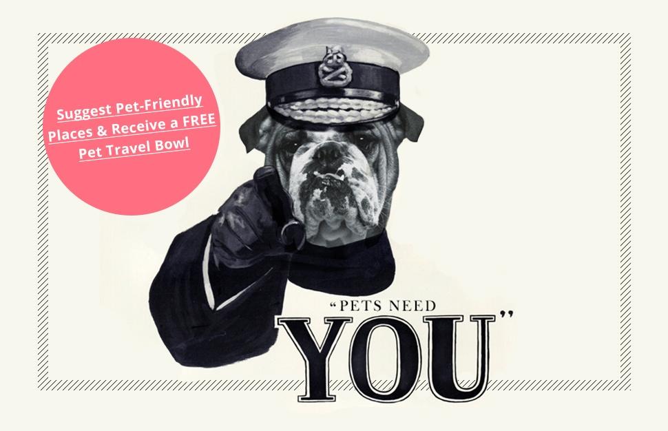 Pets Pyjamas Dog Friendly Hitel Breaks Cornwall