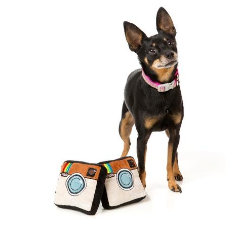 Plush Dogsta Dog Toy 3
