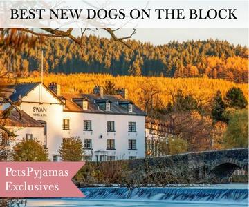 The Swan Hotel & Spa at Newby Bridge, Cumbria