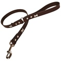 Chocolate Silver Bones Classic Leather Dog Lead