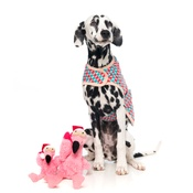 FuzzYard - Flo the Flamingo Christmas Dog Toy